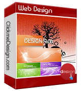 Web Design and Web Development